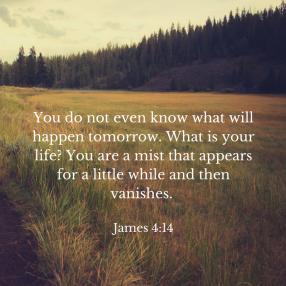 James 4;14