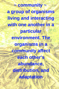 community - a group of organisms orliving and interacting with one another in a particualr environment. The organisms in a community affect each other's abundance, distribution, and adaptation.png