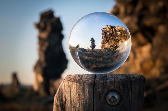 macro-outdoors-perspective-268953.jpg