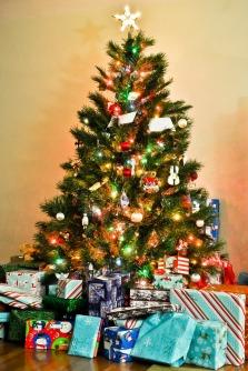 tree-1283772_1280