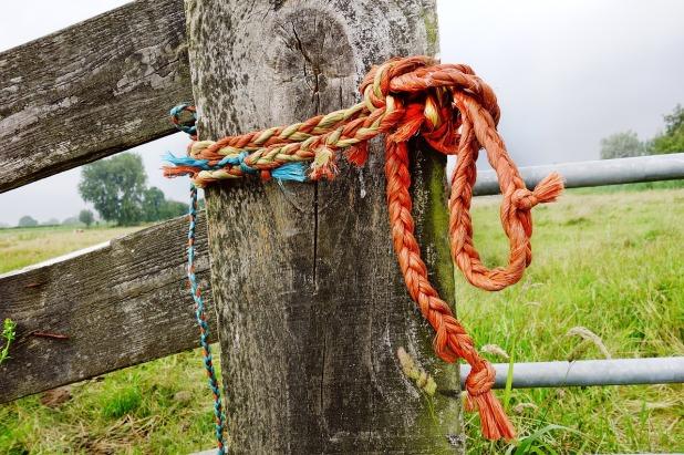 rope-2828754_1280