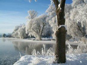 winter-210307_1280