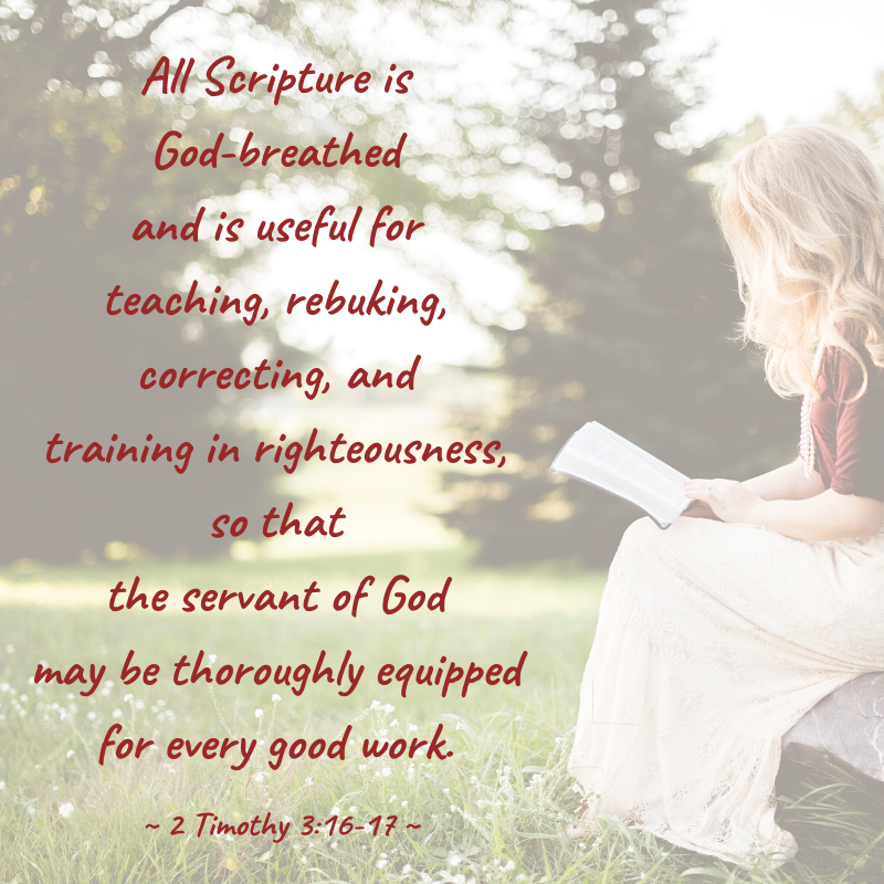 All Scripture is God-breathed and is useful for teaching, rebuking, correcting and training in righteousness, so that the servant of God may be thoroughly equipped for every good work. ~ 2 Timothy 3_16 ~