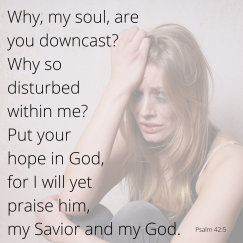 Why, my soul, are you downcast? Why so disturbed within me? Put your hope in God, for I will yet praise him, my Savior and my God. Psalm 42_5