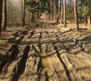 muddy-road-694774_1280